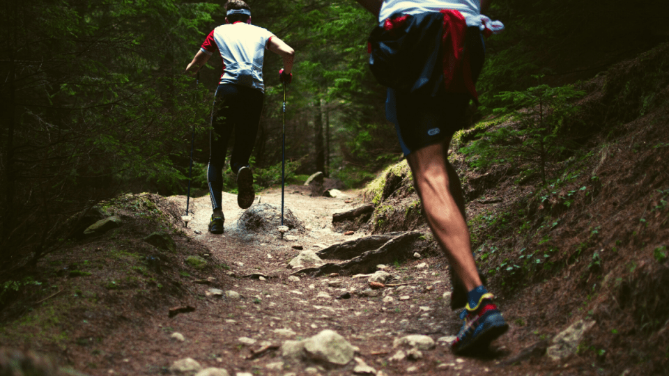Trail Running for Beginners: 11 Reasons to Give It a Try